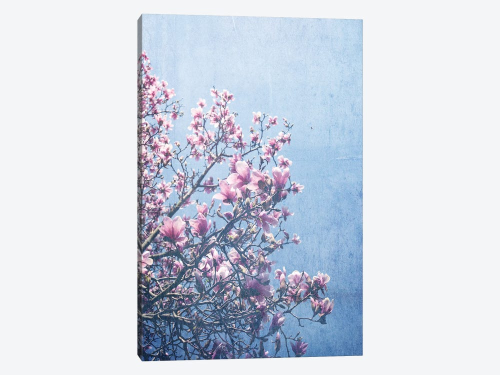 She Bloomed Everywhere She Went by Olivia Joy StClaire 1-piece Canvas Wall Art