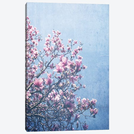 She Bloomed Everywhere She Went Canvas Print #OJS37} by Olivia Joy StClaire Art Print