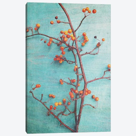 She Hung Her Dreams On Branches Canvas Print #OJS38} by Olivia Joy StClaire Canvas Artwork
