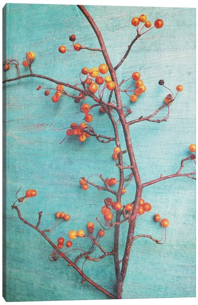 She Hung Her Dreams On Branches Canvas Art Print