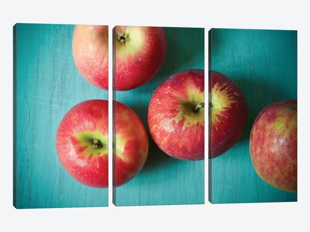 Apples by Olivia Joy StClaire 3-piece Canvas Artwork