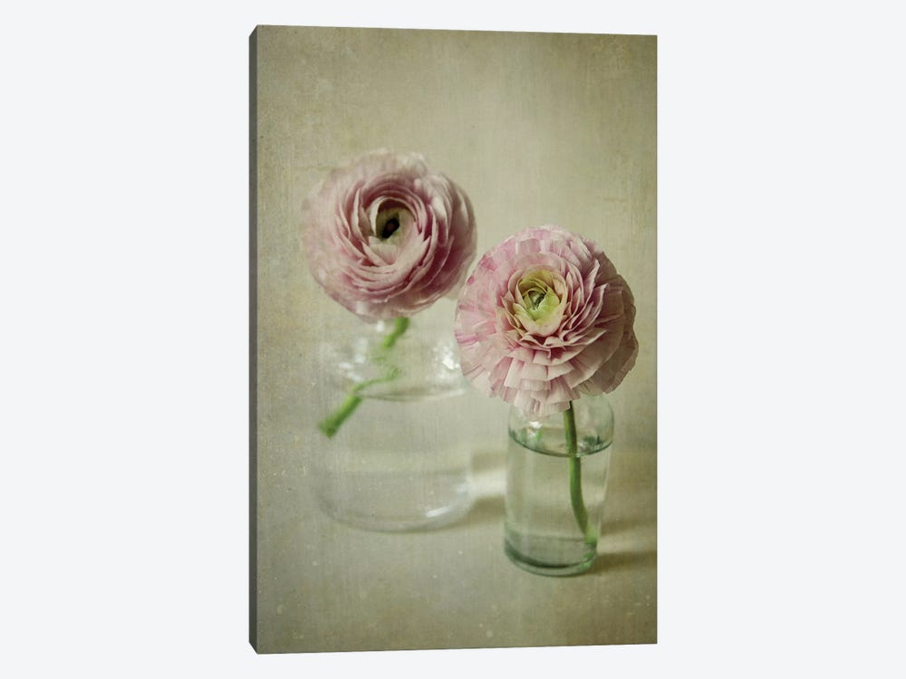 Spring Bloom by Olivia Joy StClaire 1-piece Canvas Wall Art