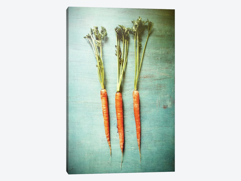 Three Carrots by Olivia Joy StClaire 1-piece Canvas Art Print