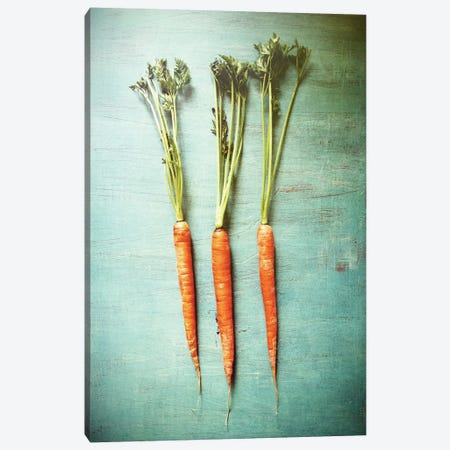 Three Carrots Canvas Print #OJS43} by Olivia Joy StClaire Canvas Art Print