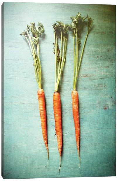 Three Carrots Canvas Art Print