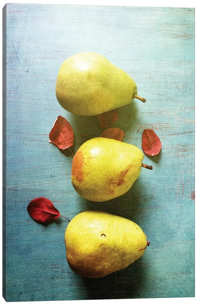 Three Pears Canvas Art Print