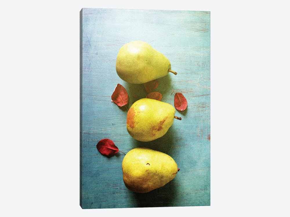 Three Pears by Olivia Joy StClaire 1-piece Canvas Wall Art