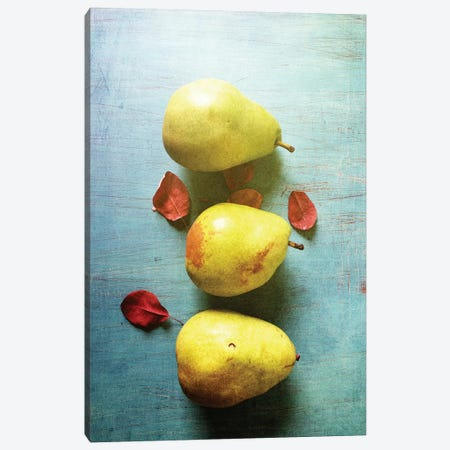 Three Pears Canvas Print #OJS44} by Olivia Joy StClaire Canvas Wall Art