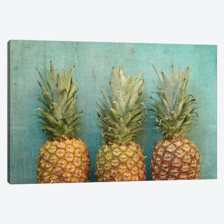 Tropical Canvas Print #OJS46} by Olivia Joy StClaire Canvas Artwork