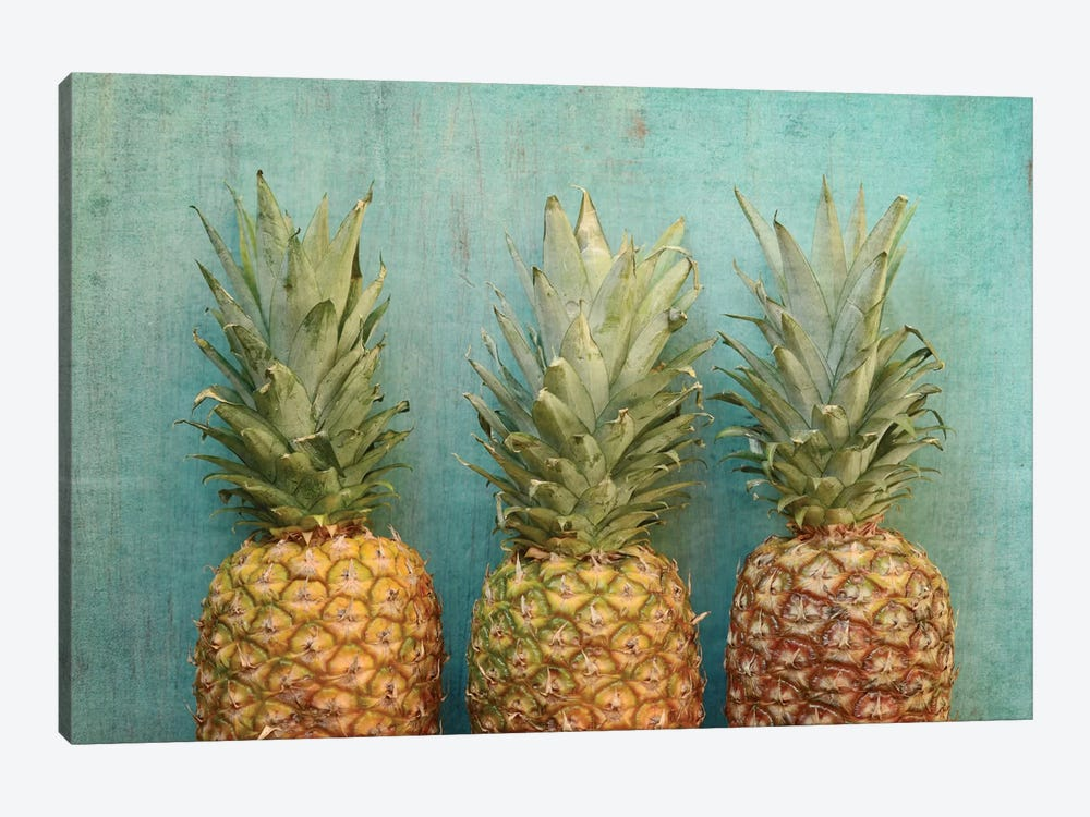Tropical by Olivia Joy StClaire 1-piece Canvas Wall Art