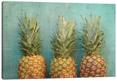 Tropical Canvas Art Print
