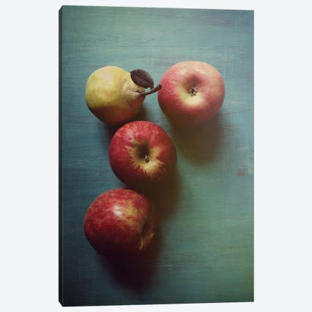 Autumn Apples Canvas Print #OJS4} by Olivia Joy StClaire Canvas Wall Art