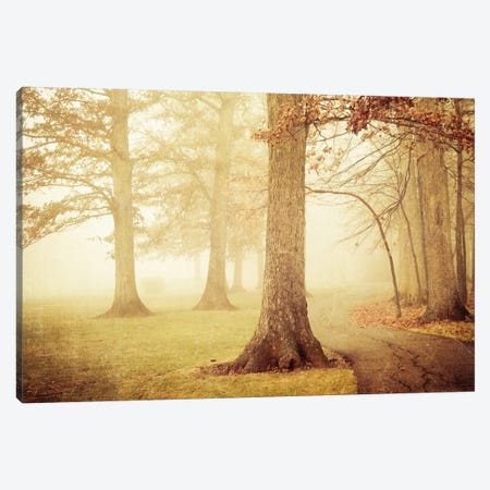 I Heard Whispering In The Woods Canvas Print #OJS62} by Olivia Joy StClaire Canvas Print