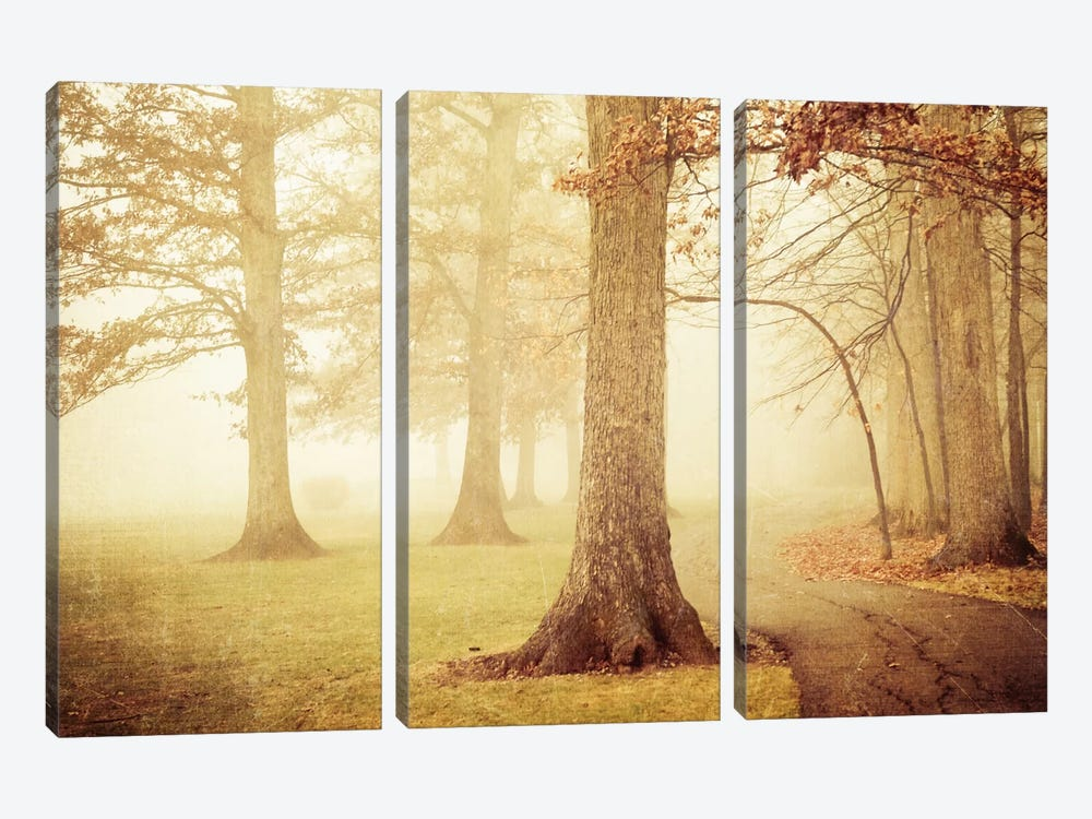 I Heard Whispering In The Woods by Olivia Joy StClaire 3-piece Canvas Art