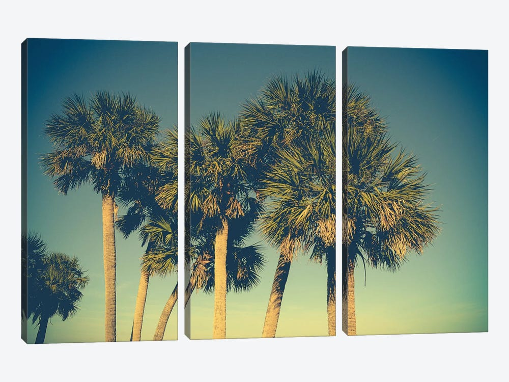 Palm Trees by Olivia Joy StClaire 3-piece Canvas Print