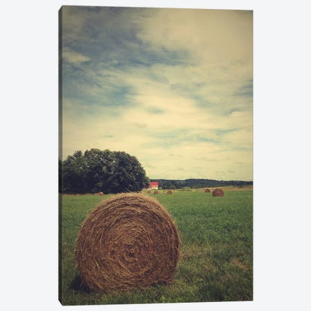 The Bale Canvas Print #OJS6} by Olivia Joy StClaire Canvas Art