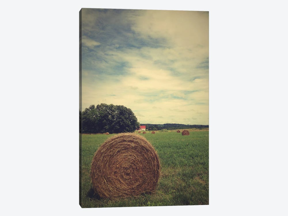 The Bale by Olivia Joy StClaire 1-piece Art Print