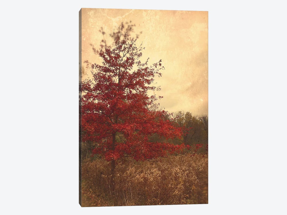 Red Oak by Olivia Joy StClaire 1-piece Art Print