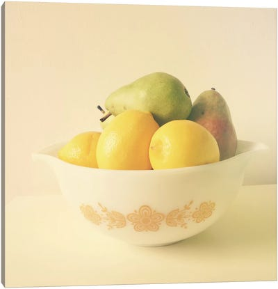 Retro Fruit Canvas Art Print