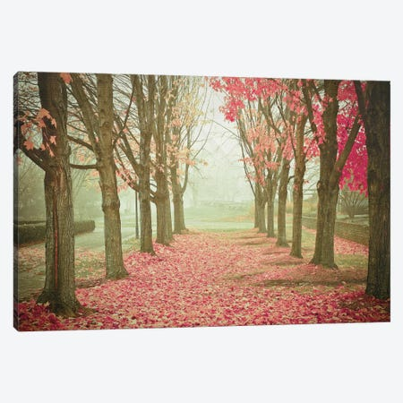 Scarlet Autumn Canvas Print #OJS72} by Olivia Joy StClaire Canvas Art