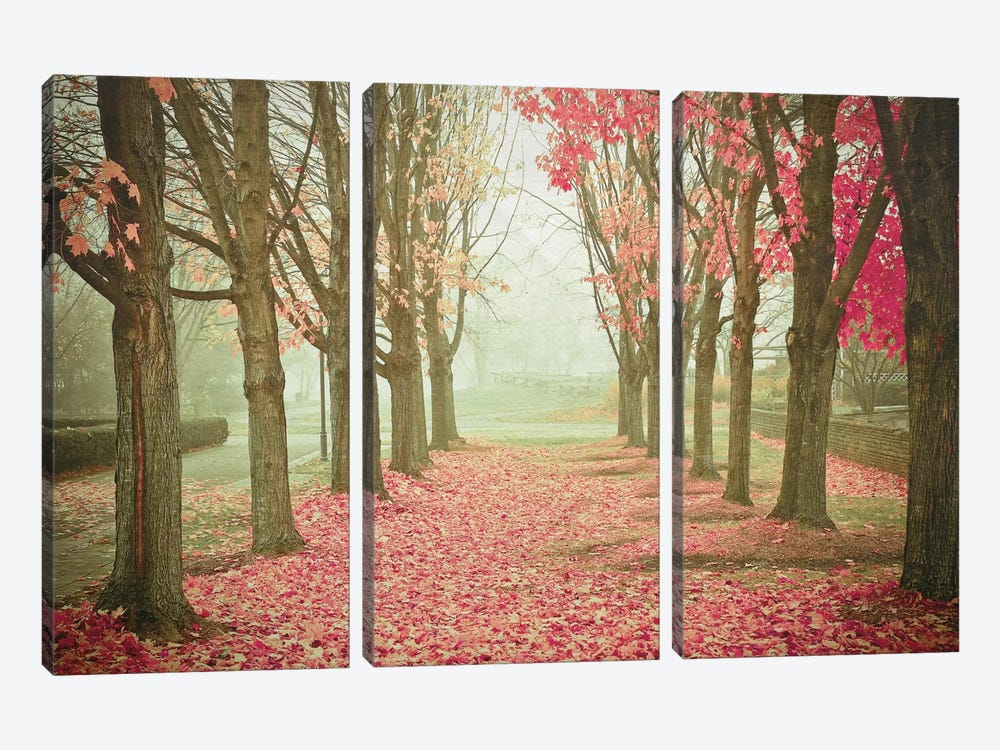 Scarlet Autumn by Olivia Joy StClaire 3-piece Canvas Print
