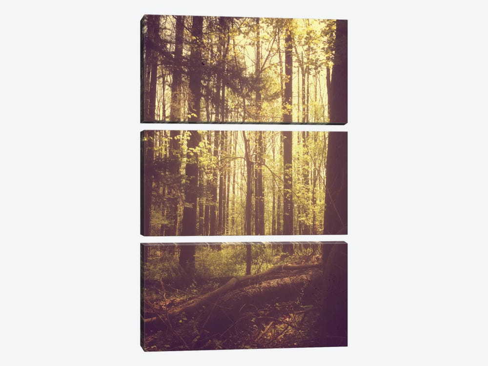 She Experienced Heaven On Earth Among The Trees 3-piece Canvas Art Print