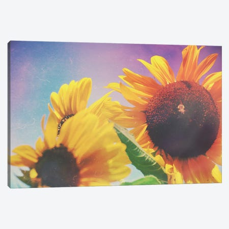 Summer Sunshine Day Canvas Print #OJS78} by Olivia Joy StClaire Canvas Wall Art