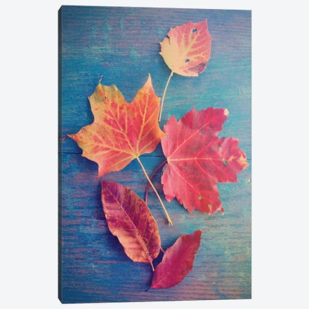 The Colors Of Autumn Canvas Print #OJS79} by Olivia Joy StClaire Canvas Artwork