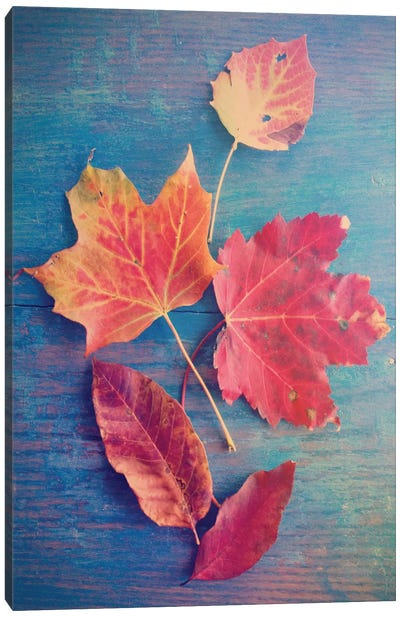 The Colors Of Autumn Canvas Art Print