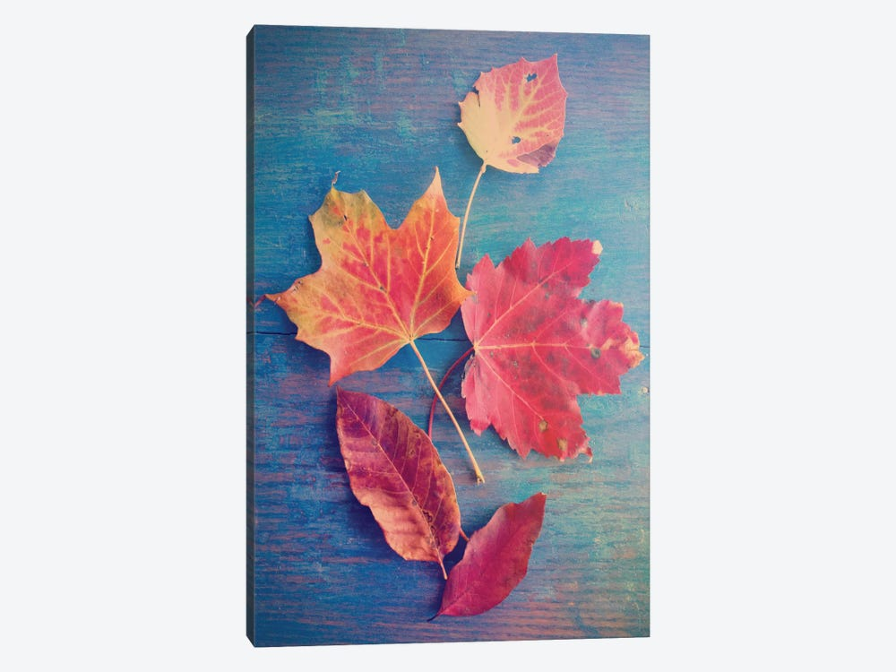 The Colors Of Autumn by Olivia Joy StClaire 1-piece Canvas Wall Art
