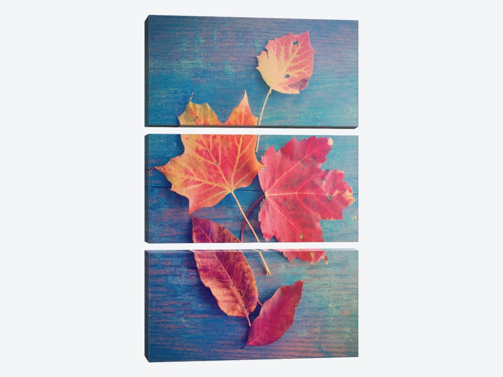 The Colors Of Autumn by Olivia Joy StClaire 3-piece Canvas Artwork
