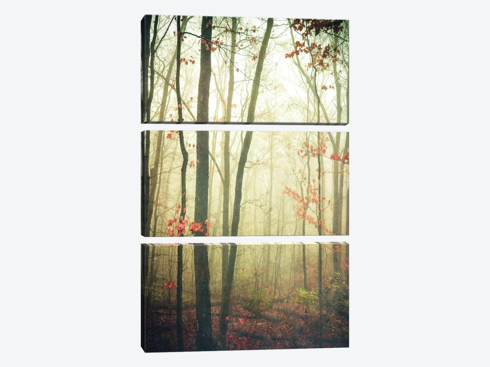 The Woods Are Lovely, Dark, And Deep by Olivia Joy StClaire 3-piece Art Print