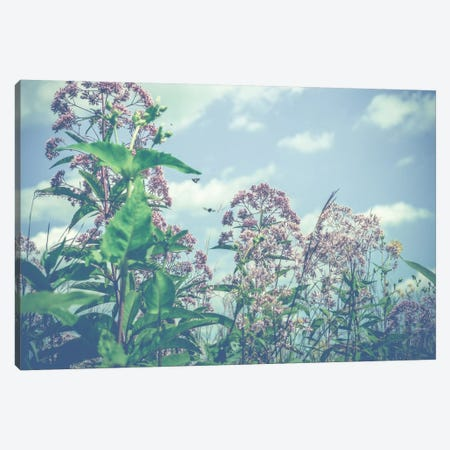 Wild And Free Canvas Print #OJS85} by Olivia Joy StClaire Canvas Art