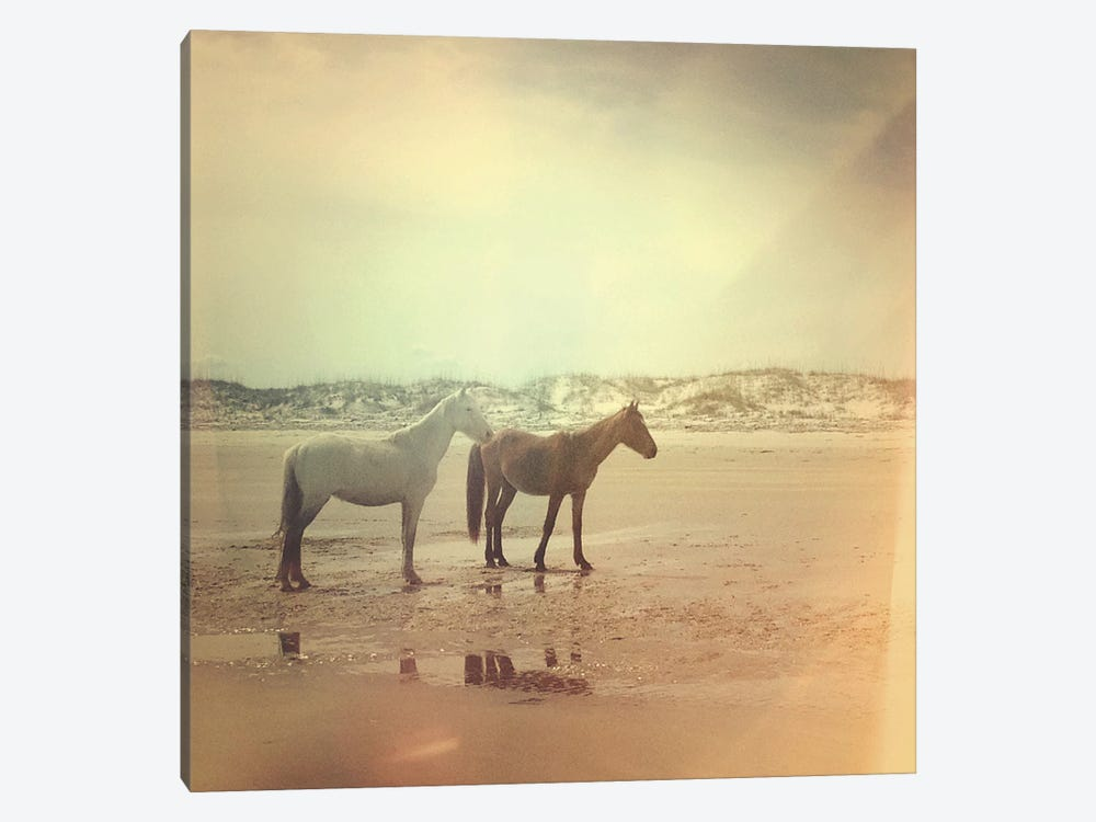 Wild Horses by Olivia Joy StClaire 1-piece Canvas Wall Art