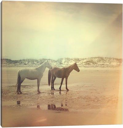 Wild Horses Canvas Art Print