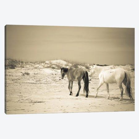Wild Horses VI Canvas Print #OJS88} by Olivia Joy StClaire Art Print