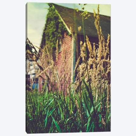 A Forgotten Barn Canvas Print #OJS91} by Olivia Joy StClaire Canvas Artwork