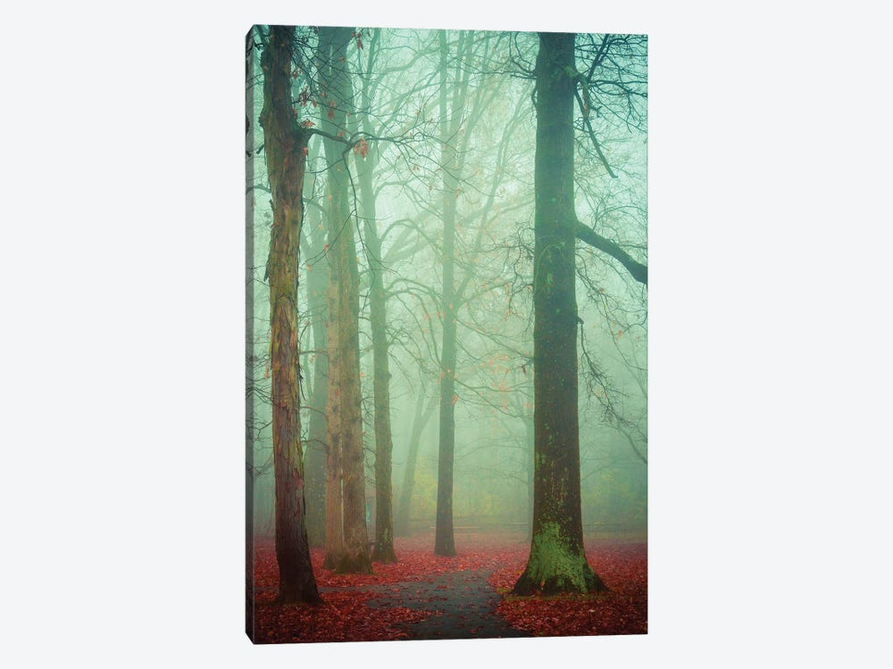 Autumn Fog by Olivia Joy StClaire 1-piece Canvas Art
