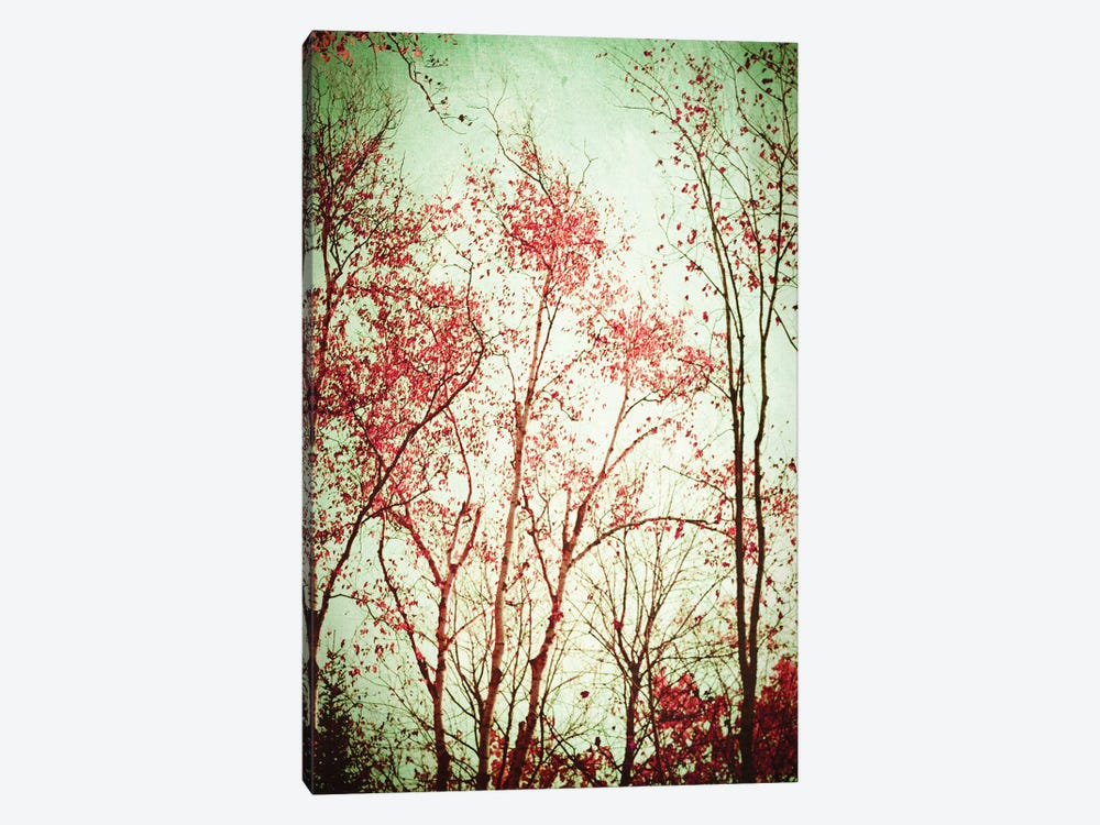 Autumn In Michigan by Olivia Joy StClaire 1-piece Canvas Print