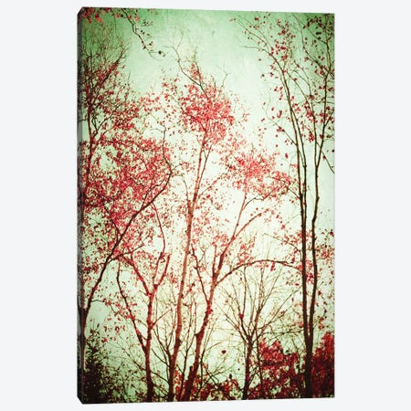 Autumn In Michigan Canvas Print #OJS96} by Olivia Joy StClaire Art Print