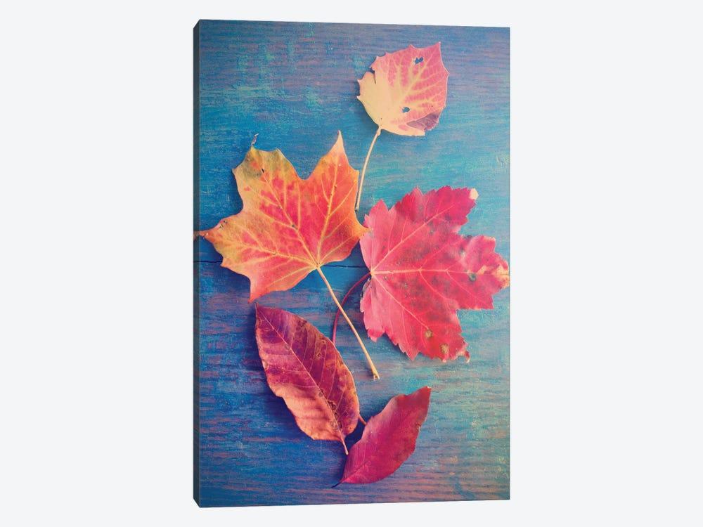 Autumn Leaf Still Life by Olivia Joy StClaire 1-piece Canvas Wall Art