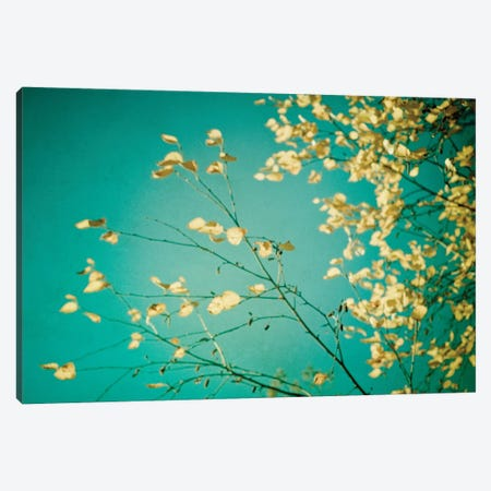 Autumn Moment Canvas Print #OJS98} by Olivia Joy StClaire Canvas Artwork