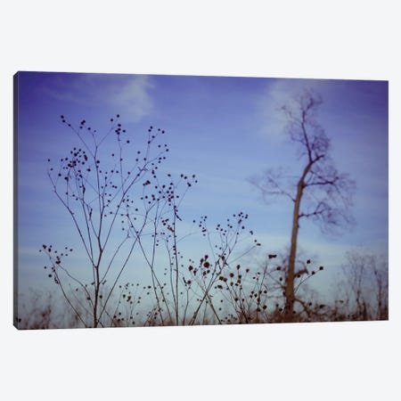 Autumn Twilight Canvas Print #OJS99} by Olivia Joy StClaire Canvas Artwork
