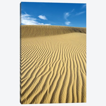 USA, California, Death Valley, Ripples in the sand, Mesquite Flat Sand Dunes. Canvas Print #OKE2} by Kevin Oke Canvas Art Print