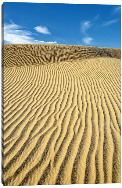 USA, California, Death Valley, Ripples in the sand, Mesquite Flat Sand Dunes. Canvas Art Print