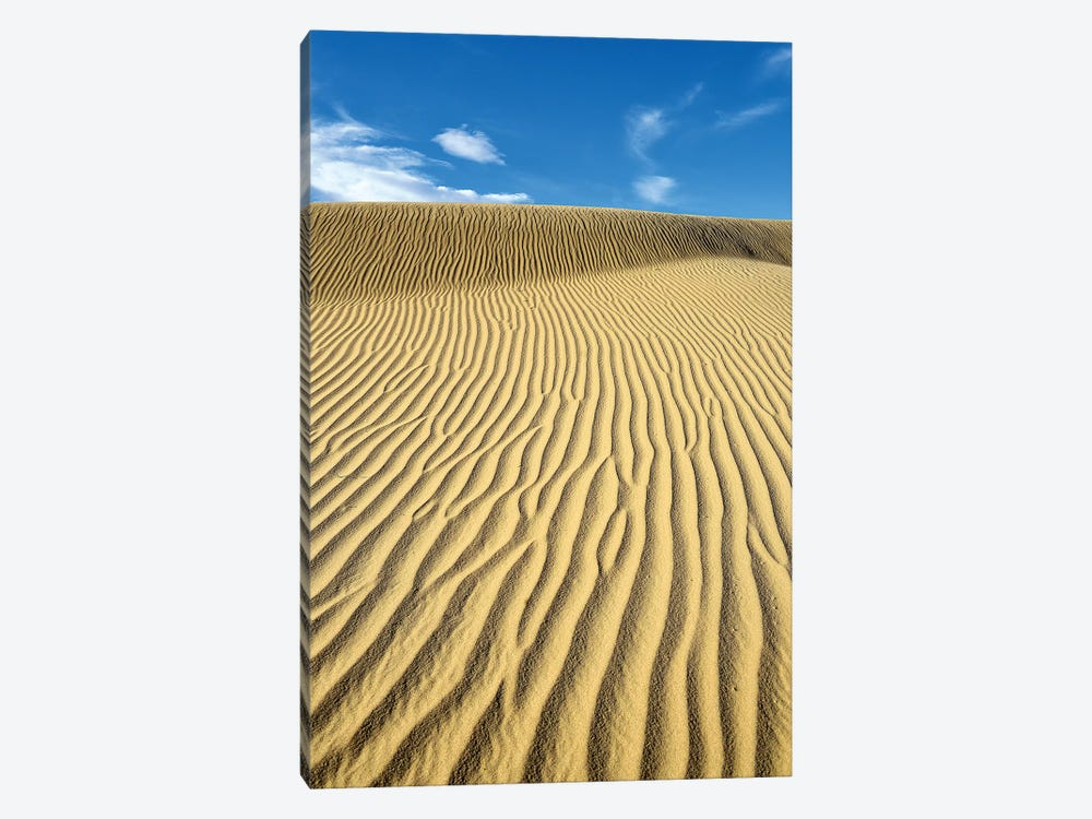 USA, California, Death Valley, Ripples in the sand, Mesquite Flat Sand Dunes. by Kevin Oke 1-piece Canvas Artwork