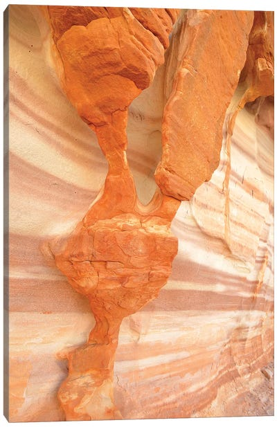 USA, Nevada. Valley of Fire State Park. Sculpted red sandstone Canvas Art Print