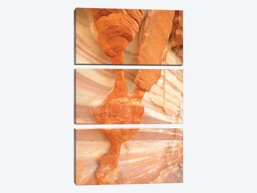 USA, Nevada. Valley of Fire State Park. Sculpted red sandstone by Kevin Oke 3-piece Canvas Art Print
