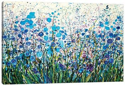 Mid Summer Meadow Flowers Canvas Art Print