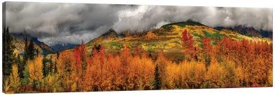 Autumn Scene At Crested Butte, Colorado Canvas Art Print